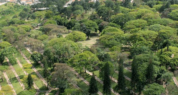 Ruas e paisagens vistas de cima no Cemitério Gethsêmani