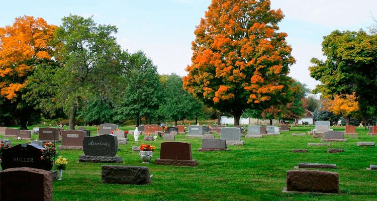 cemitério bonito - exumação